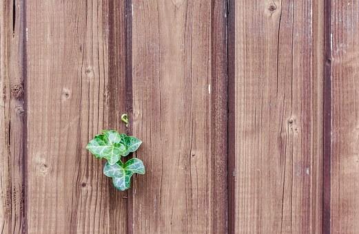wood-482288__340