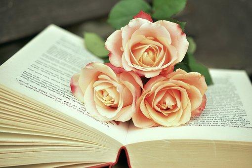 book-1771073__340
