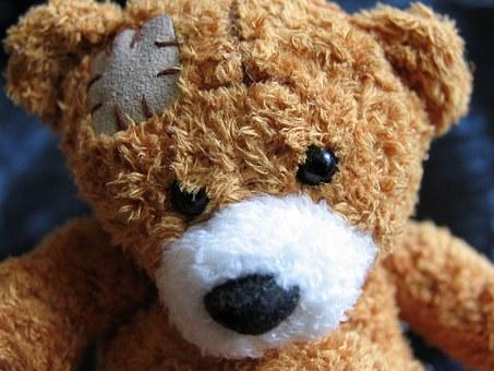 plush-teddy-bear-1082525__340